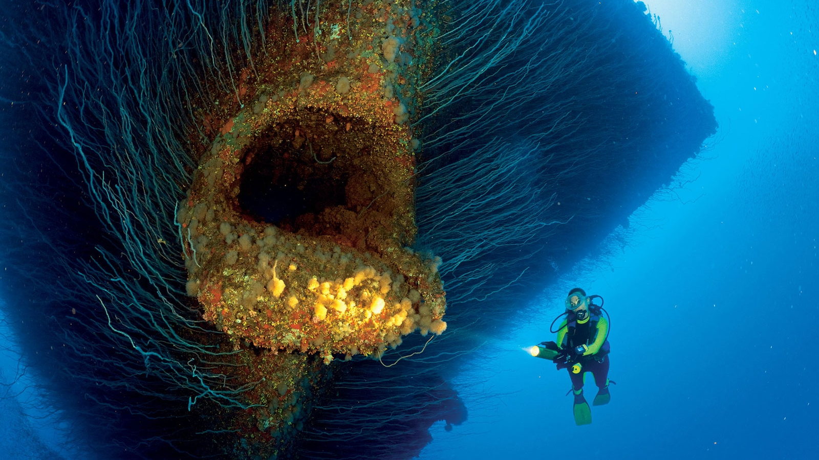 The USS Saratoga Wreck